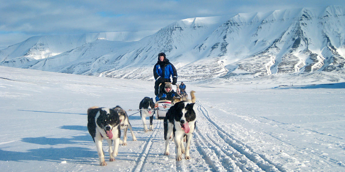 dog_sledding_svalbard_norway_2_1_bc93d754-3c89-4afa-9f9c-1889261ce99f